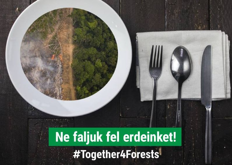 Together4Forests_WWF_cl