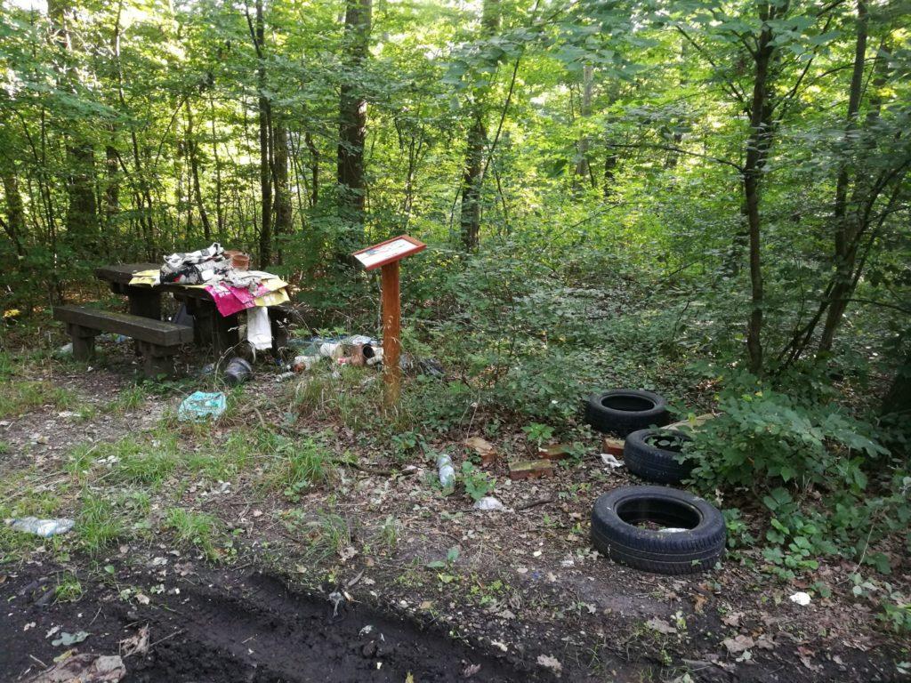A  Szombathelyi Erdészeti Zrt. fél év alatt közel húsz hulladéklerakót számolt fel . (Fotó: Szombathelyi Erdészeti Zrt.)